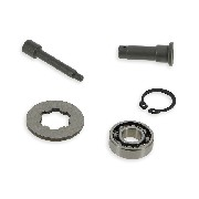Kit de revisión de embrague para Quad Shineray 250cc STXE (Tipo 2)